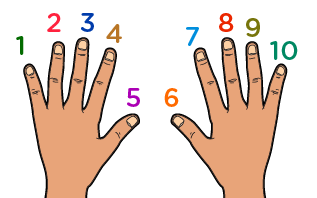 learn to count up to 10 - ten fingers